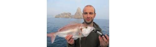 Pesca Pesada y Ligera desde Embarcación